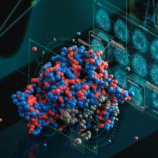 碳云智能基于 RAPIDS 加速数字生命AI应用
