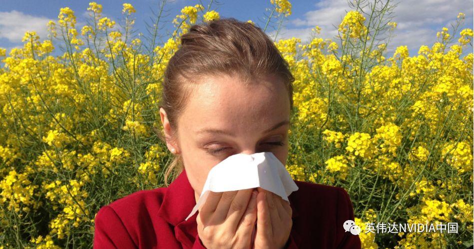 备受季节性过敏困扰?人工智能帮助监测空气中的过敏原
