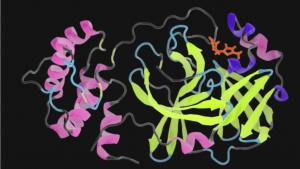 锁定病毒原子键 | NVIDIA GPU助力冠状病毒研究